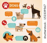 Stock vector vector set of infographics design elements dogs and pets in flat style 152339567