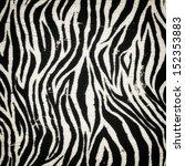 vintage black zebra pattern  | Shutterstock . vector #152353883