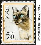 poland   circa 1964  postage... | Shutterstock . vector #152997053