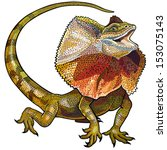 Frill Necked Lizard Isolated O...