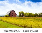 American Countryside Corn Fiel...