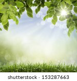 soft defocused spring... | Shutterstock . vector #153287663