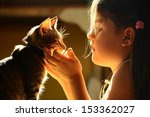 Stock photo girl looking at the cat 153362027
