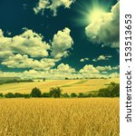 autumn landscape with wheat... | Shutterstock . vector #153513653