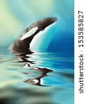 killer whale and sea. | Shutterstock . vector #153585827