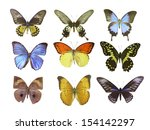 butterfly on white | Shutterstock . vector #154142297