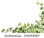 frame of ivy   Shutterstock . vector #154459007