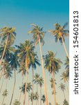 vintage palm trees at tropical... | Shutterstock . vector #154601813