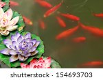Fish Koi In Pond And Lotus...