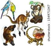 animal,australia,australian,bird,budgerigar,budgie,collection,continent,creature,creeper,duckbill,environment,exotic,fauna,frill necked lizard