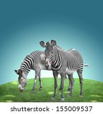 Two Zebras On A Color Background