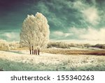 Vintage Winter Landscape With...