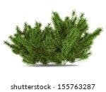 Pine Bush Isolated