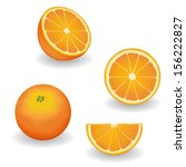 Vector   Oranges  Four Views ...