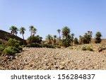 Morocco  Hamada Du Draa  Stone...