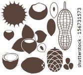 nuts. vector illustration | Shutterstock .eps vector #156731573