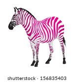 zebra with strips of pink color....   Shutterstock . vector #156835403