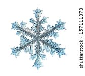 Snowflake Isolated Natural...