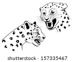 Two Snarling Leopard In Profil...