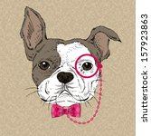 accessories,animal,argyle,art,beautiful,bow,boy,card,cartoon,chain,child,cool,cute,decorative,design