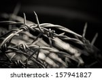 roll of barbed wire | Shutterstock . vector #157941827