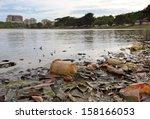 discarded plastic debris... | Shutterstock . vector #158166053