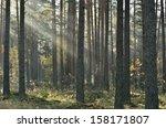 sunbeams breaking through fog...   Shutterstock . vector #158171807