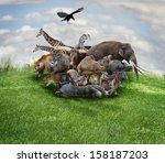 wild animals and birds collage | Shutterstock . vector #158187203