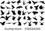 set of 40 silhouettes of birds | Shutterstock .eps vector #158336303