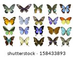 butterfly on white | Shutterstock . vector #158433893
