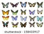 butterfly on white | Shutterstock . vector #158433917