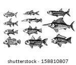 hand drawn fish   vector... | Shutterstock .eps vector #158810807