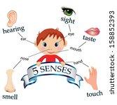 5 senses educational concept...   Shutterstock .eps vector #158852393