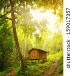 Wooden Little Cottage In A...