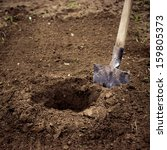dig a hole. planting or... | Shutterstock . vector #159805373