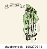 watercolor hand drawn vintage... | Shutterstock . vector #160270343