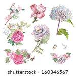 Painted Watercolor Flowers