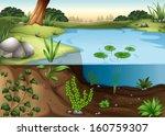 illustration of a pond ecosytem | Shutterstock .eps vector #160759307