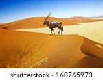 Wandering Dune Of Sossuvlei In...