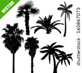 Set Of Palm Tree Silhouettes O...