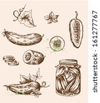 Set of vector vintage hand drawn cucumbers
