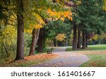 fall colors explode as a lone... | Shutterstock . vector #161401667