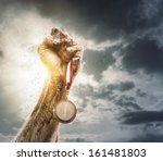success concept  male hand rise ... | Shutterstock . vector #161481803