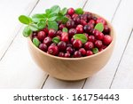 blueberry and cowberry with... | Shutterstock . vector #161754443