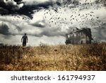 Man Walking In A Field Towards...