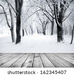 Panorama Of Winter Forest With...