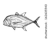 Illustration of a Giant Trevally