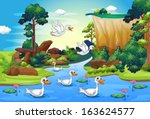 Stock vector illustration of a group of ducks at the river in the forest 163624577