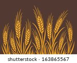 agricultural,agriculture,autumn,background,barley,bread,cereal,countryside,crop,cultivated,ear,farm,field,flour,food