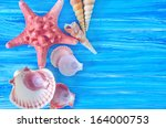 sea shells | Shutterstock . vector #164000753